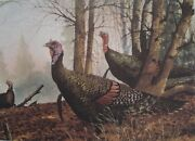David Hagerbaumer 1988 Nwtf Stamp Print Springand039s A Comin Signed 928/1000 51