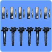 Set Of 6 Bosch Spark Plugs + 6 High Performance Ignition Coils For Ford And More