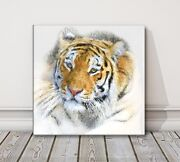 Tiger Canvas Print Painting Framed Picture Wall Art Animal Various Sizes