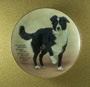 Cherished Border Collies Nicer Place Plate Collie Puppy Dog Charming Htf