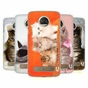 Head Case Designs Cats Hard Back Case And Wallpaper For Motorola Phones 1