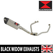 Hyosung Gt125r Gt125 Comet Exhaust System Tri Oval Steel/carbon Silencer Sc30t