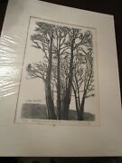Stefan Martin 1936-1994 Tree Of Life Roosevelt First Aid Squad 1981 Litho
