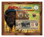 Native American Bison Colorized Coin And Currency Set In 8 X 10 Frame - H