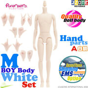 Azone Pure Neemo Flection M Boy Danshi Male Body And Hand Parts A Set White Doll