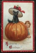 Mint Vintage Usa Picture Postcard Ppc Cover Halloween Greetings Black Cat