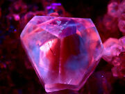 2.25 Rare Twins Calcite Crystal From Dayehubei China