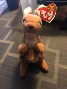 Ty Very Rare Pouch Beanie Baby Pouch Pvc Pellets 1996