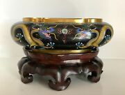 Great Old 11+ Chinese Cloisonne Oval Dragon Jardiniere Bowl Planter Fine Stand