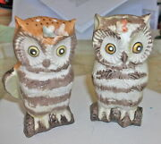 Owl With Flowers On Head Salt And Pepper Shakers Vintage Leftonand039s @1960and039s Rare