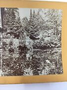 Willow Pond Cemetary Lowell Mass Ma Stereoview Card C. 1870s Massachusettes