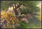 Pf Murray Signed And Rare Antq Cea.1920s Huge Handcolor Photo Apple Tree In Meadow