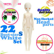 Obitsu 22bd-f01w-s Whity 1/6 Body And Non Flocked Head Parts Neemo Flection Doll