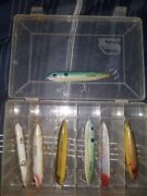 Saltwater Super Spook Fishing Lures In A Clear Plastic Divided Case