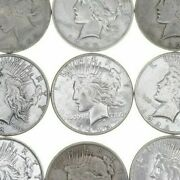 5 Us American Peace Silver Dollars 1922-1925 - Eagle Rev 90 5 Face 1/4 Roll