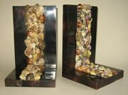 Nice Old Vintage Seashell And Cow Horn Victorian Style Bookends Sailor's Valentine