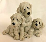 Gray Stone 5x6 Quarry Critters Playful Litter Of 3 Dogs Figurine