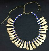 Necklace Made Of Bison Teeth And Beads - Lakota Sioux - End Of 19th C.