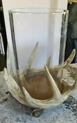 Pottery Barn Large Antler Hurricane Candle Holder New In Box Nla Sold Out