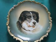 Antique L.s. And S. Lazarus Straus Ny Ceramic St Bernard Dog Platter Wall Plaque