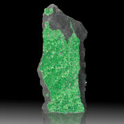 5.7 Twinkling Emerald Green Uvarovite Sparkly Dazzling Crystals Russia For Sale
