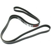 5061025 Dayco Drive Belt New For Olds Chevy E150 Van F150 Truck Ninety Eight