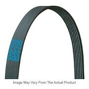 5080933 Dayco Drive Belt New For Autocar Llc. Xpeditor Kenworth T800 2005-2007