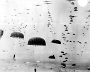 New World War Ii Photo 1st Allied Airborne Paratroopers In Holland - 6 Sizes
