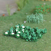 Free Shipping Mp Scenery 90 Broccolis And Cauliflowers O Scale Model Farm Layout