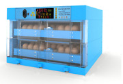 Blue Household Chicken Duck Goose Egg Incubator Fully Automatic Two Power Supply