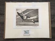 """1963-64 Federal Duck Stamp Print """"american Brant"""" Signed By Edward Bierly"""
