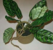Threshold Hanging Plant Basket Sun Room Porch Green Leaf Woven Pot 16 Tall New