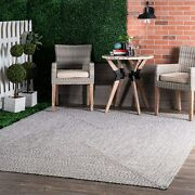 Nuloom Wynn Braided Indoor/outdoor Area Rug 6and039 X 9and039 Light Grey/salt And Pepper