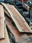 Live Edge Sycamore River Table Slabs