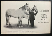 Mint Usa Advertising Picture Postcard Algoet Coal Wood And Ice St Louis Fair 1915