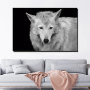 Wild Forest Wolf Wolves And Wolf Canvas Art Print For Wall Decor