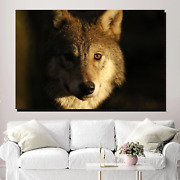 Warrior Wolf Wolves And Wolf Canvas Art Print For Wall Decor