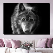 Iberian Wolf Wolves And Wolf Canvas Art Print For Wall Decor