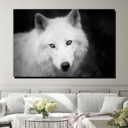 Stare Of The White Wolf Wolves And Wolf Canvas Art Print For Wall Decor