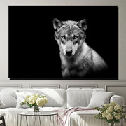 Young Wolf Wolves And Wolf Canvas Art Print For Wall Decor