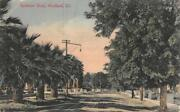 Residence Street Scene Woodland California C1910s Hand-colored Vintage Postcard