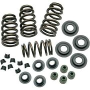 Sands Cycle Sidewinder .650 Valve Spring Kit For 05-17 88/96/103 Twin Cam