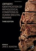 Ortnerand039s Identification Of Pathological Conditions In Human Skeletal Remainsandhellip