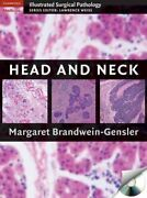 Cambridge Illustrated Surgical Pathology Ser. Head And Neck By Margaret...