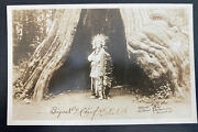 Mint Usa Rppc Real Picture Postcard Native American Indian White Elk Signed