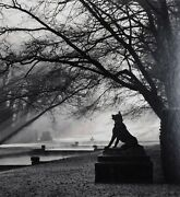 Michael Kenna 1953 Guardian Wolf Courances France 1997