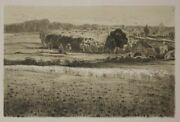 Hollenberg Felix 1868-1945 Two Farmhouses Etching From Pan 1897