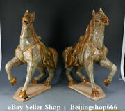 17.2 Old Chinese Tang Sancai Porcelain Dynasty Horse Statue Sculpture Pair