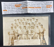 Mint Usa Real Picture Postcard Vintage Baseball Team Players Cardinals 1928