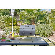 2-burner Portable Propane Gas Table Top Grill In Stainless Steel Nexgrill New